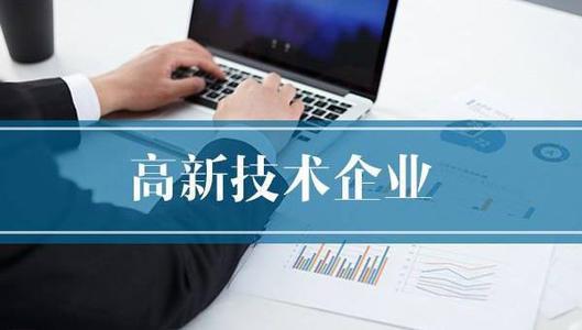 高新技术企业年报